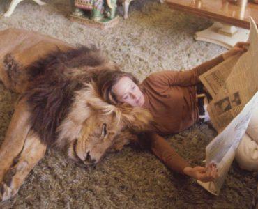 Tippi Hedren and Neil the Lion